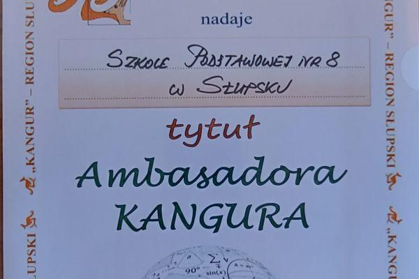 kangur468D9D71-C1EB-E18C-5E45-B99049B7EC58.jpg